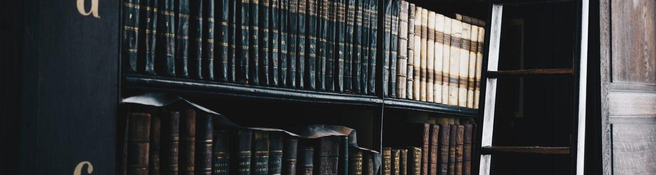 Bibliografia wpracy licencjackiej